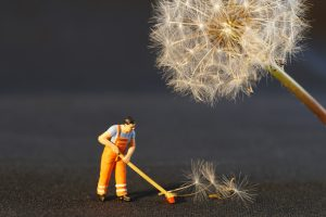 biohazard cleaners kansas city