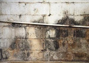 Severe water damage on a cinderblock wall in a neglected basement. Its covered in dirt, cracks, mold and mildew.